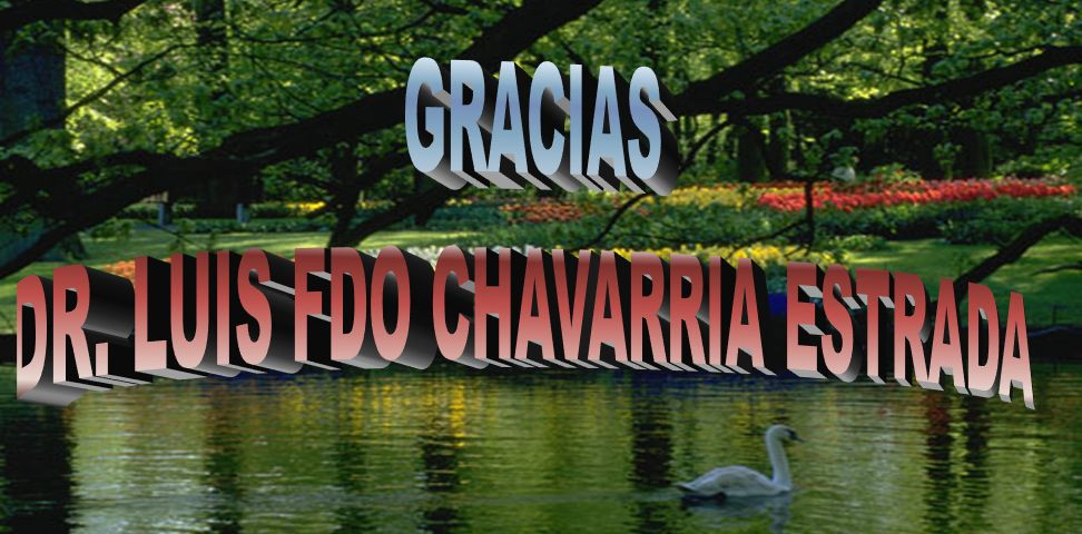 DR. LUIS FDO CHAVARRIA ESTRADA