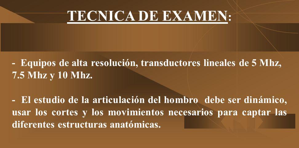 TECNICA DE EXAMEN:- Equipos de alta resolución, transductores lineales de 5 Mhz, 7.5 Mhz y 10 Mhz.