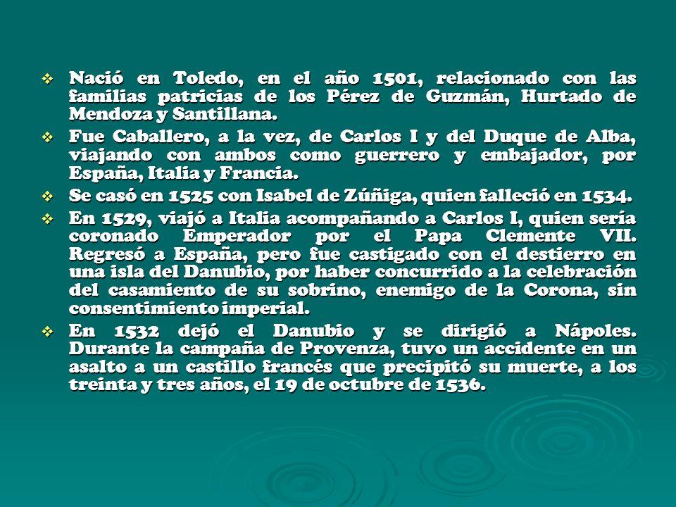 Nació en Toledo, en el año 1501, relacionado con las familias patricias de los Pérez de Guzmán, Hurtado de Mendoza y Santillana.
