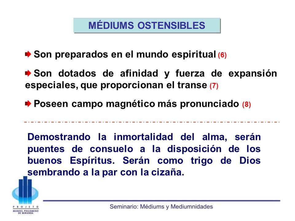 MÉDIUMS OSTENSIBLES Son preparados en el mundo espiritual (6)