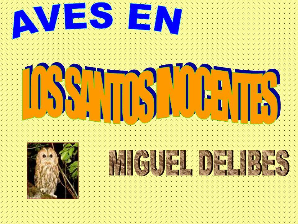 AVES EN LOS SANTOS INOCENTES MIGUEL DELIBES