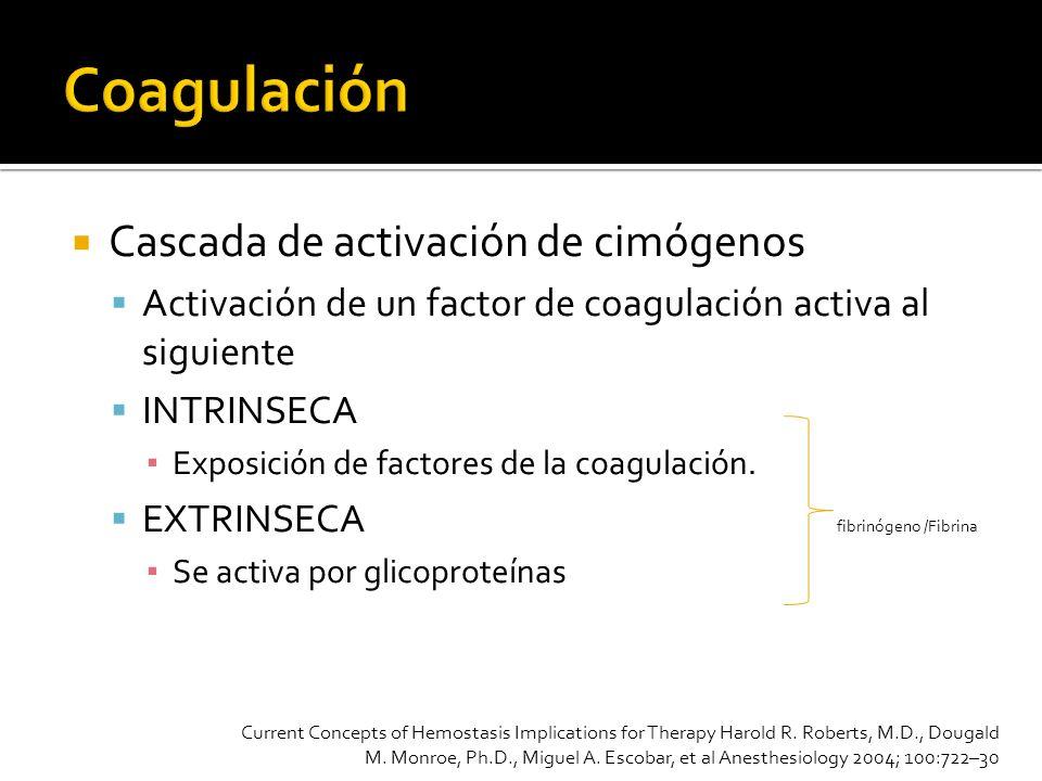 Coagulación Cascada de activación de cimógenos