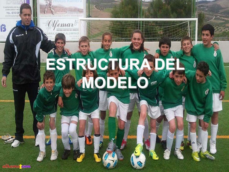 ESTRUCTURA DEL MODELO