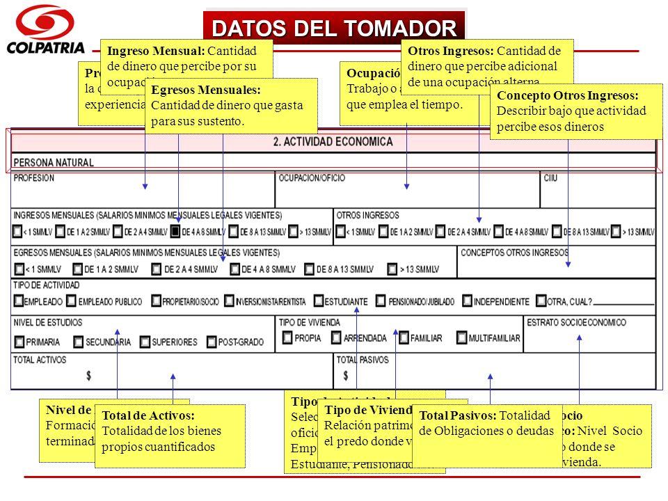 DATOS DEL TOMADOR Ingreso Mensual: Cantidad de dinero que percibe por su ocupación.