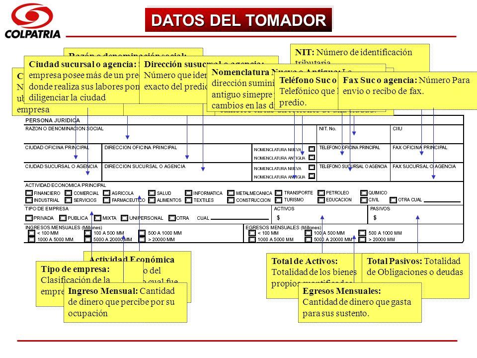 DATOS DEL TOMADOR NIT: Número de identificación tributaria