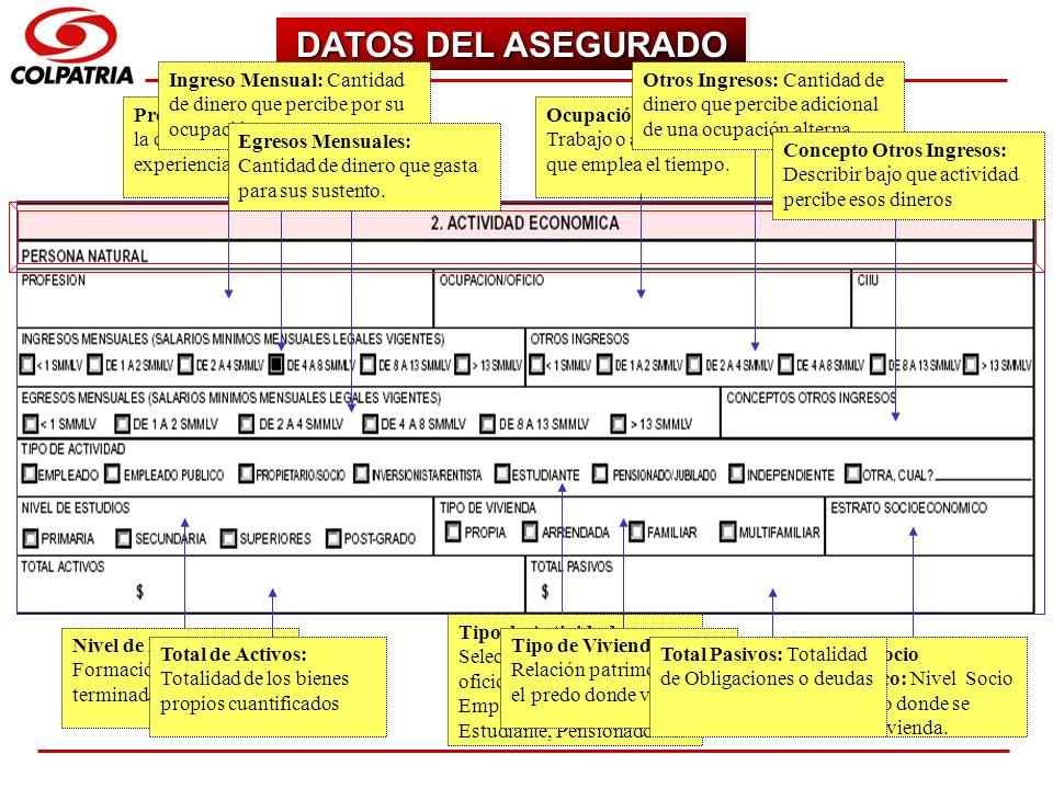DATOS DEL ASEGURADO Ingreso Mensual: Cantidad de dinero que percibe por su ocupación.