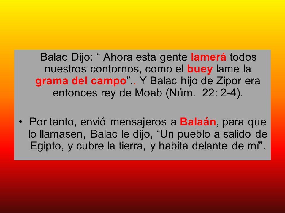 Balac Dijo: Ahora esta gente lamerá todos nuestros contornos, como el buey lame la grama del campo .. Y Balac hijo de Zipor era entonces rey de Moab (Núm. 22: 2-4).