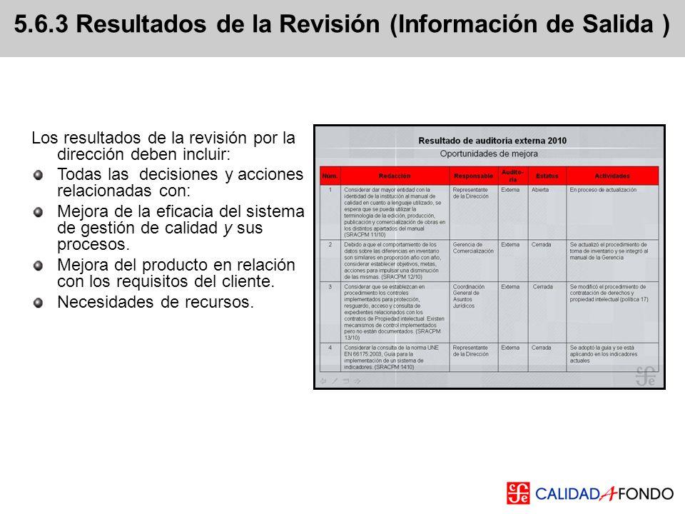 5.6.3 Resultados de la Revisión (Información de Salida )