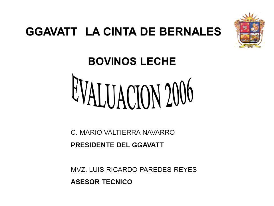 EVALUACION 2006 GGAVATT LA CINTA DE BERNALES BOVINOS LECHE