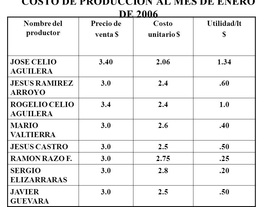 COSTO DE PRODUCCION AL MES DE ENERO DE 2006