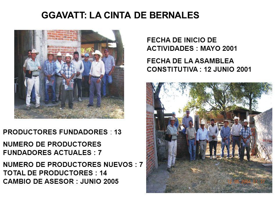 GGAVATT: LA CINTA DE BERNALES
