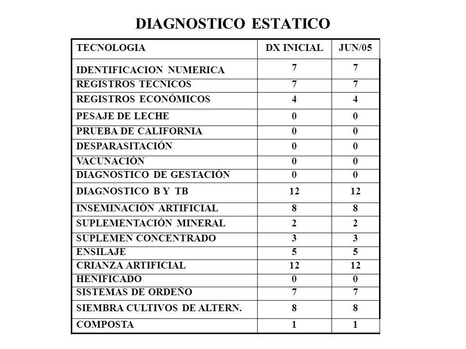 DIAGNOSTICO ESTATICO TECNOLOGIA DX INICIAL JUN/05