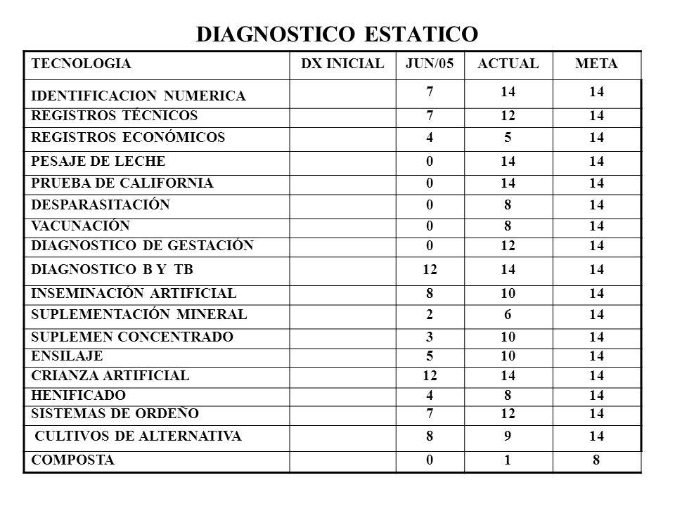 DIAGNOSTICO ESTATICO TECNOLOGIA DX INICIAL JUN/05 ACTUAL META