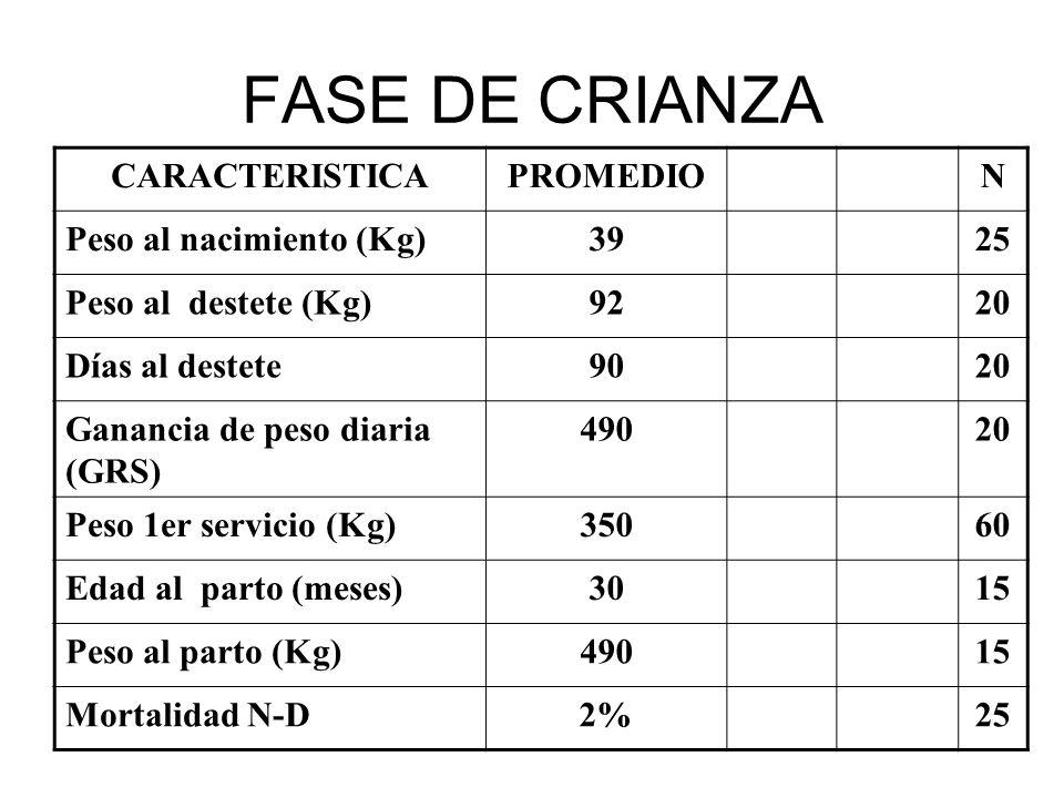 FASE DE CRIANZA CARACTERISTICA PROMEDIO N Peso al nacimiento (Kg) 39