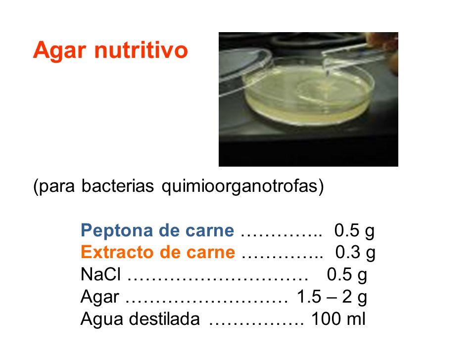 Agar nutritivo (para bacterias quimioorganotrofas)