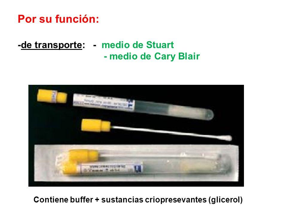 Por su función: -de transporte: - medio de Stuart