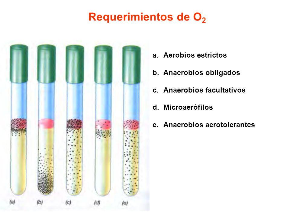 Requerimientos de O2 Aerobios estrictos Anaerobios obligados