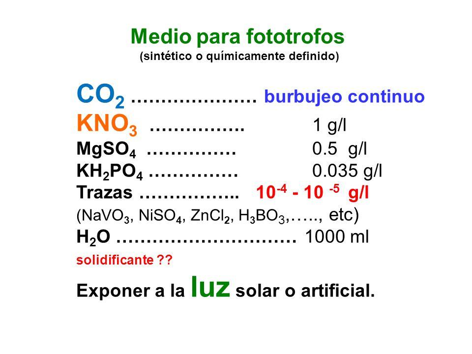 CO2 ………………… burbujeo continuo KNO3 ……………. 1 g/l MgSO4 …………… 0.5 g/l