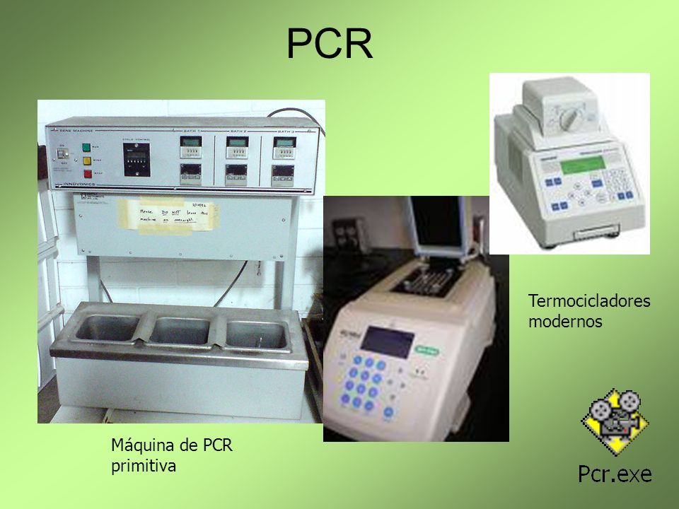 PCR Termocicladores modernos Máquina de PCR primitiva