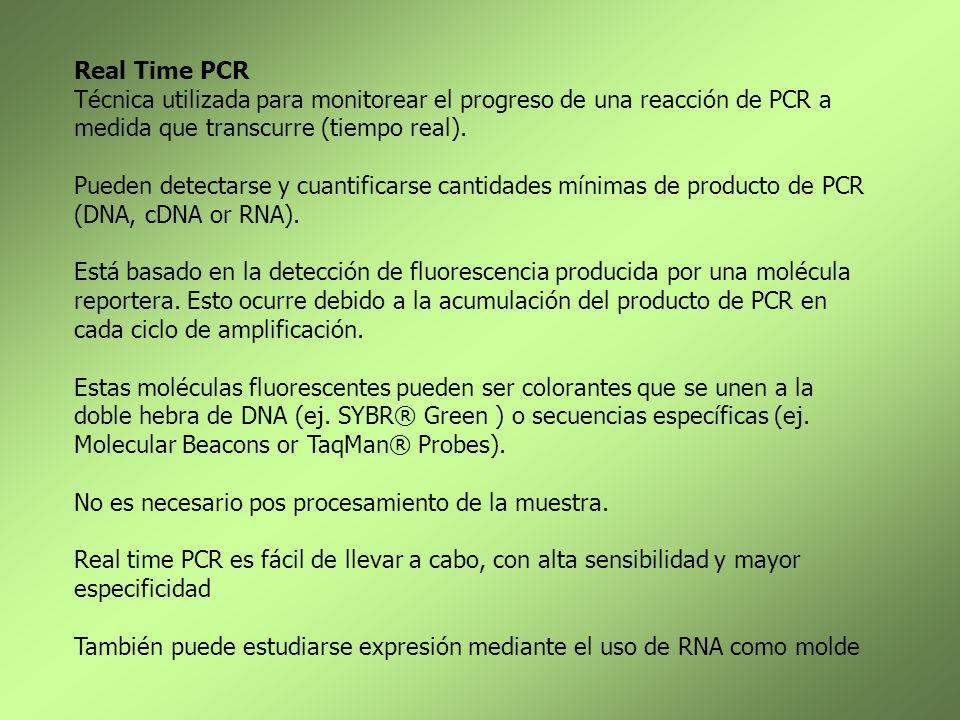 Real Time PCR Técnica utilizada para monitorear el progreso de una reacción de PCR a medida que transcurre (tiempo real).