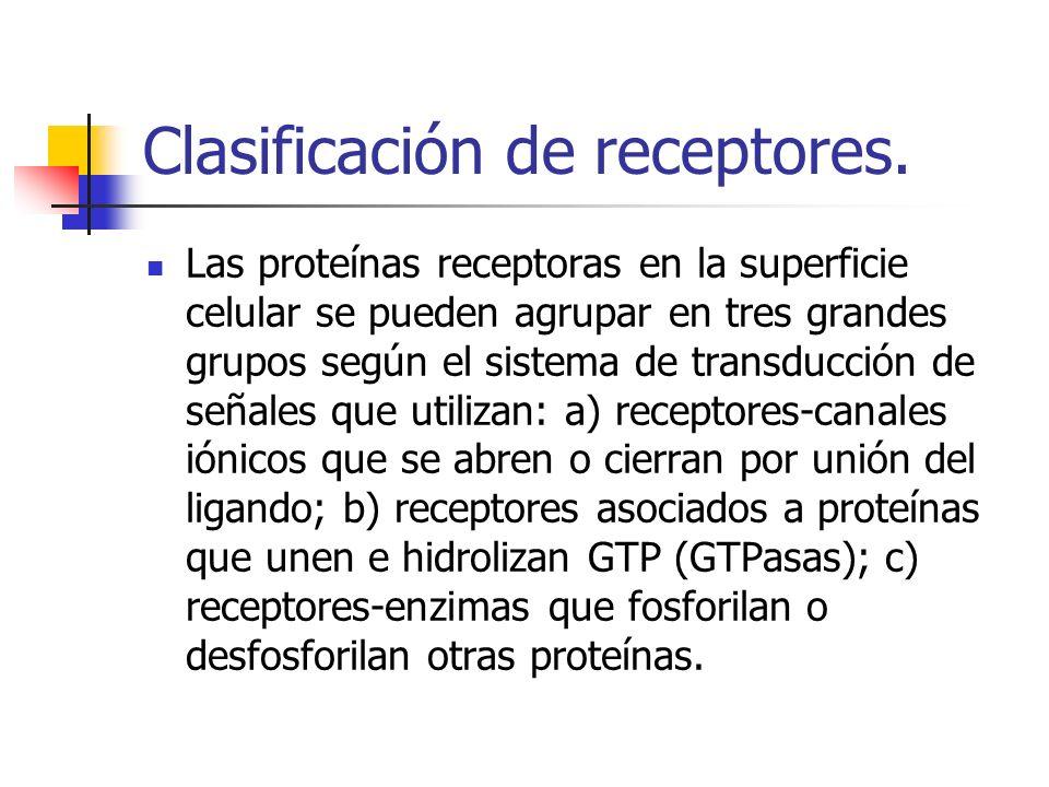 Clasificación de receptores.
