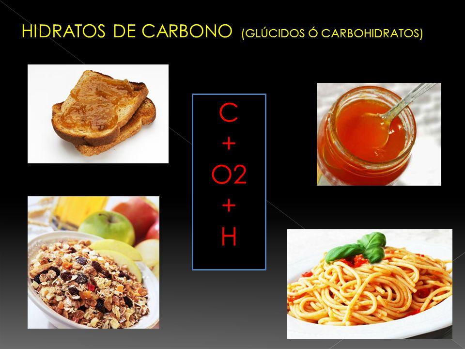 HIDRATOS DE CARBONO (GLÚCIDOS Ó CARBOHIDRATOS)