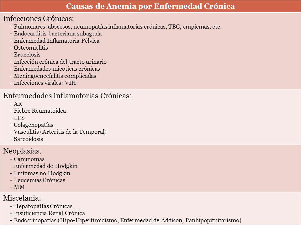 Causas de Anemia por Enfermedad Crónica