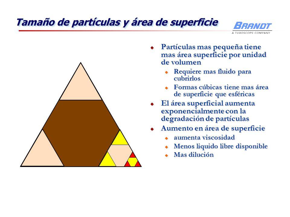 Tamaño de partículas y área de superficie