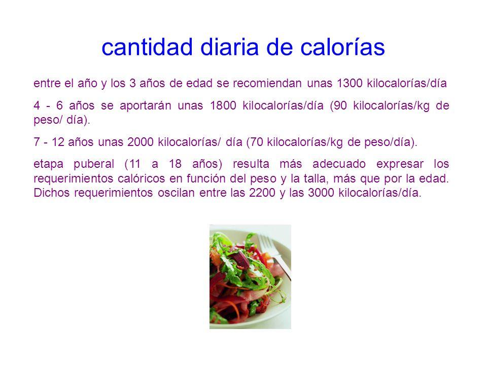 cantidad diaria de calorías