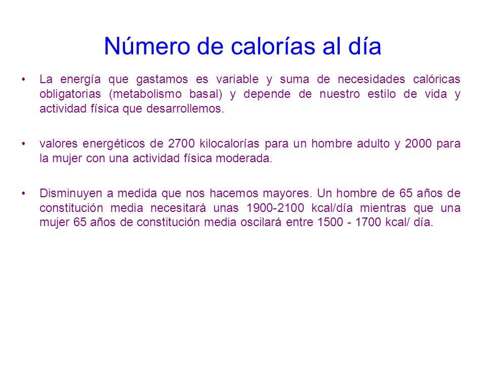 Número de calorías al día
