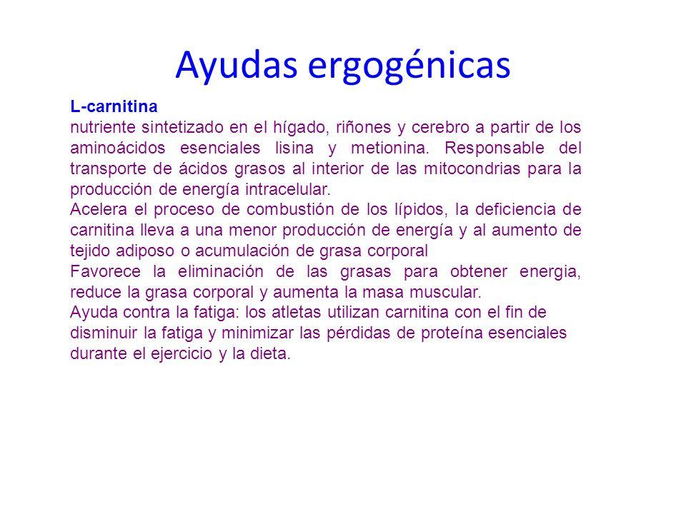 Ayudas ergogénicas L-carnitina