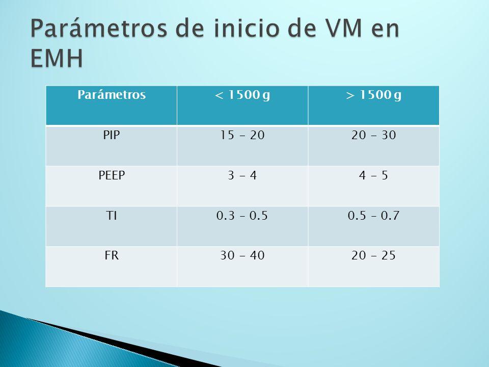 Parámetros de inicio de VM en EMH