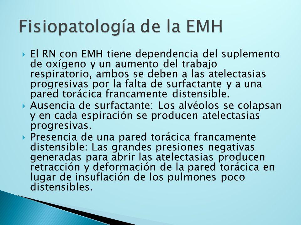 Fisiopatología de la EMH