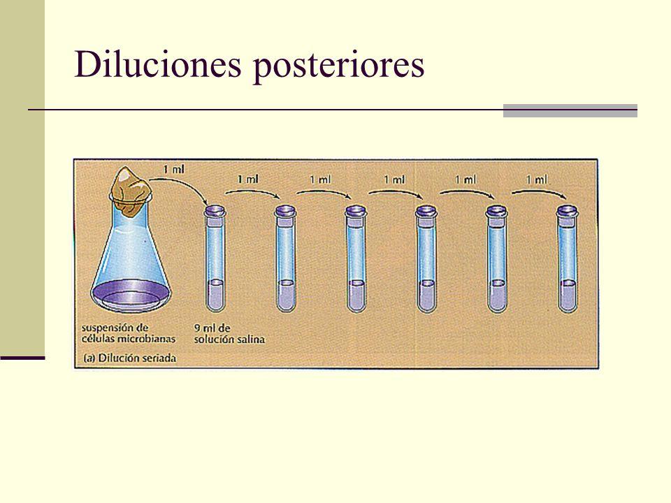 Diluciones posteriores