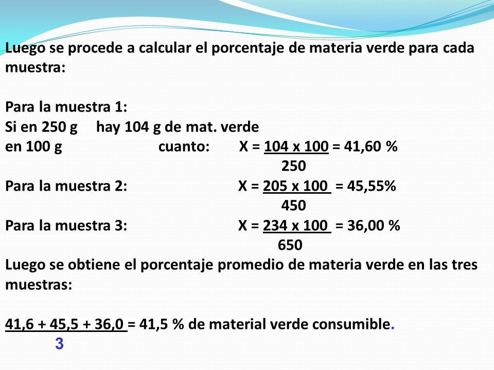 Luego se procede a calcular el porcentaje de materia verde para cada muestra: