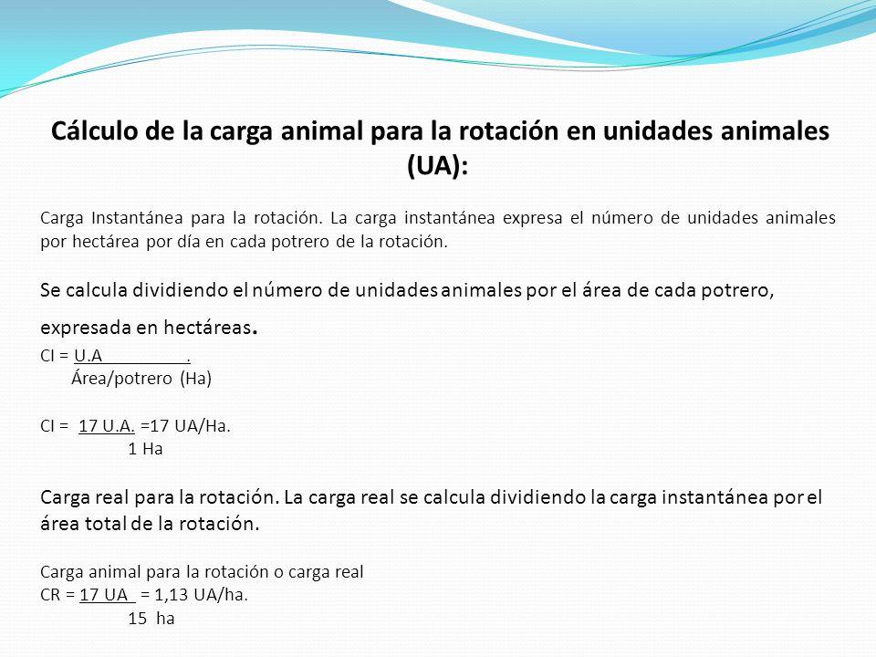 Cálculo de la carga animal para la rotación en unidades animales (UA):
