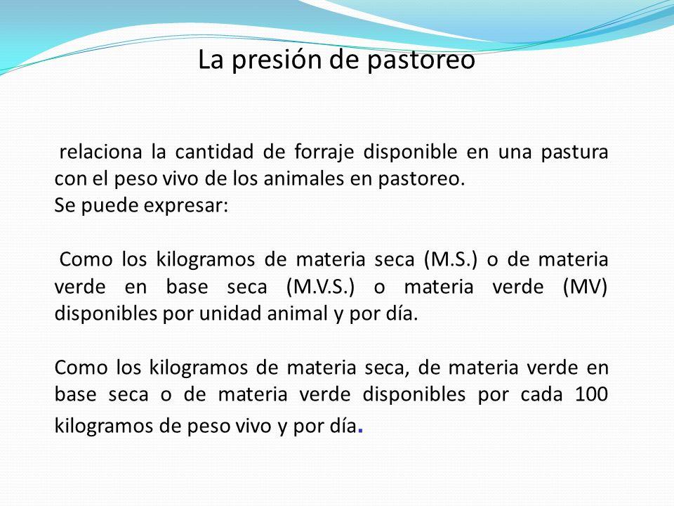 La presión de pastoreo relaciona la cantidad de forraje disponible en una pastura con el peso vivo de los animales en pastoreo.