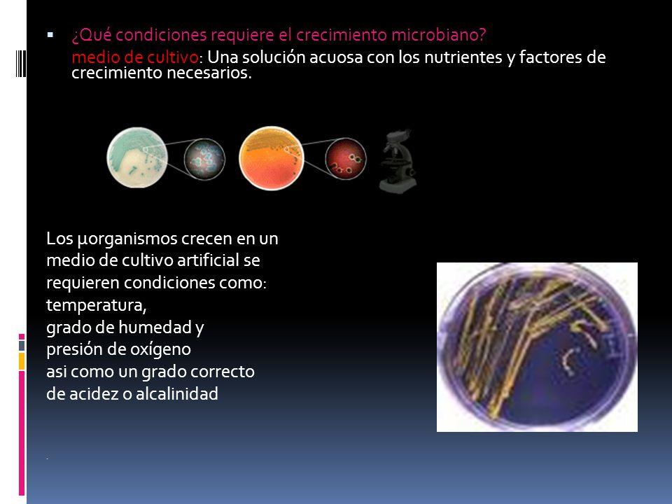 ¿Qué condiciones requiere el crecimiento microbiano