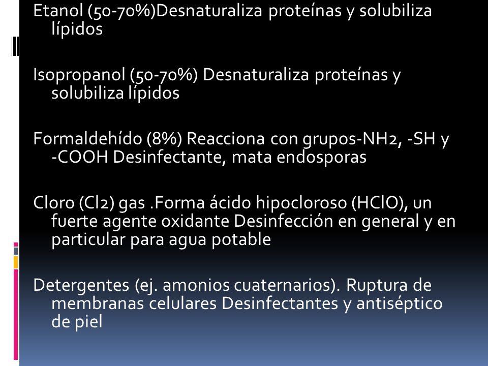 Etanol (50-70%)Desnaturaliza proteínas y solubiliza lípidos Isopropanol (50-70%) Desnaturaliza proteínas y solubiliza lípidos Formaldehído (8%) Reacciona con grupos-NH2, -SH y -COOH Desinfectante, mata endosporas Cloro (Cl2) gas .Forma ácido hipocloroso (HClO), un fuerte agente oxidante Desinfección en general y en particular para agua potable Detergentes (ej.
