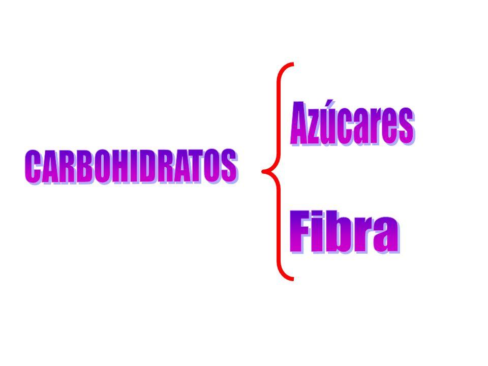 Azúcares CARBOHIDRATOS Fibra
