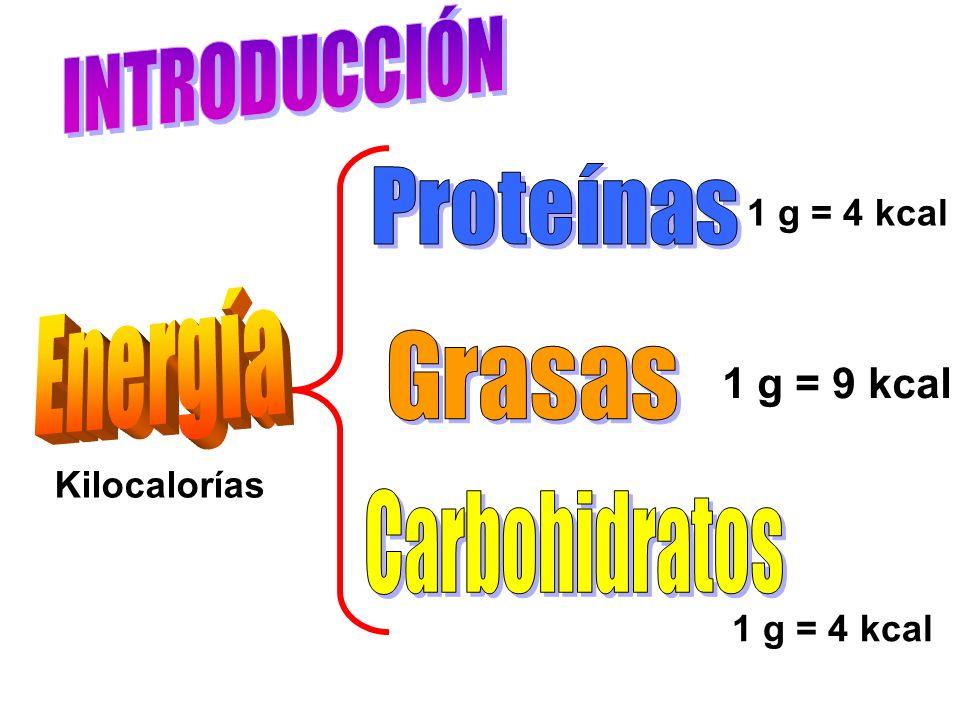 INTRODUCCIÓN Proteínas Energía Grasas Carbohidratos 1 g = 9 kcal