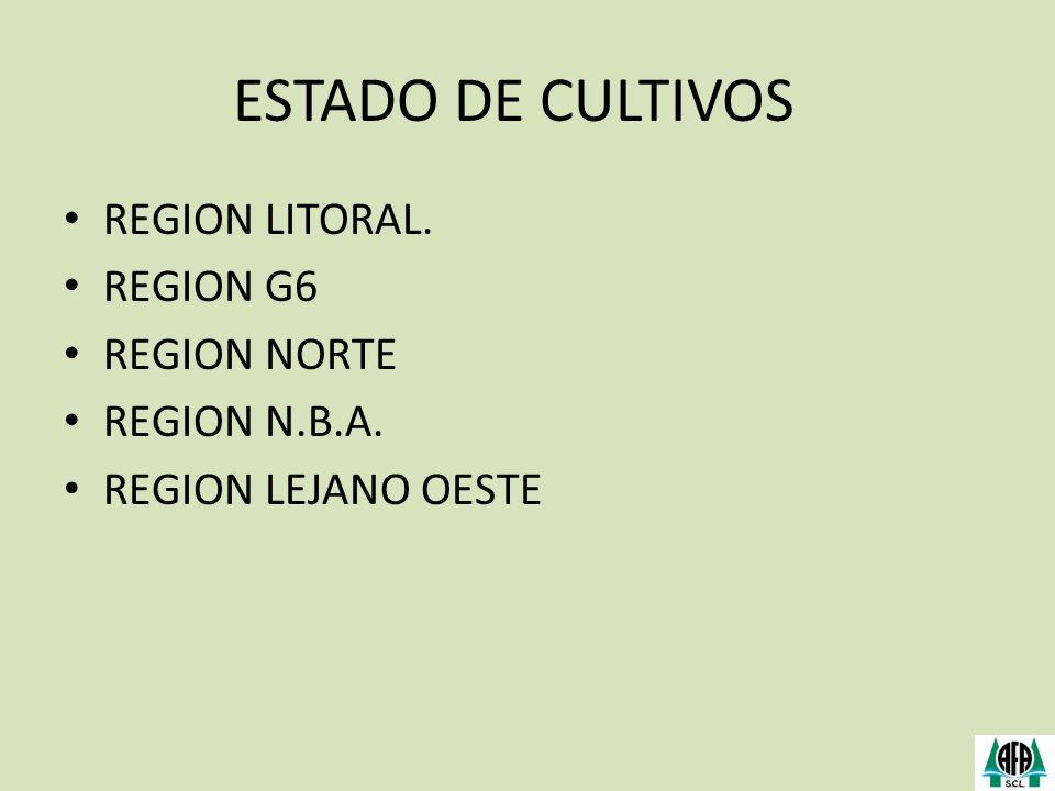 ESTADO DE CULTIVOS REGION LITORAL. REGION G6 REGION NORTE