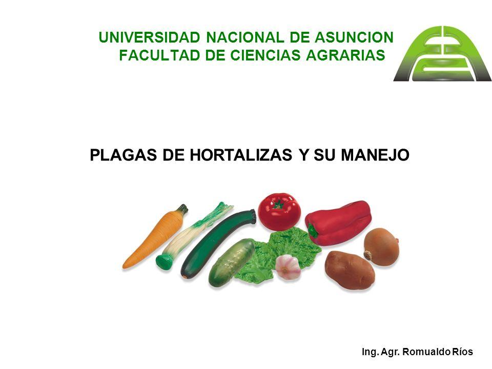 UNIVERSIDAD NACIONAL DE ASUNCION FACULTAD DE CIENCIAS AGRARIAS
