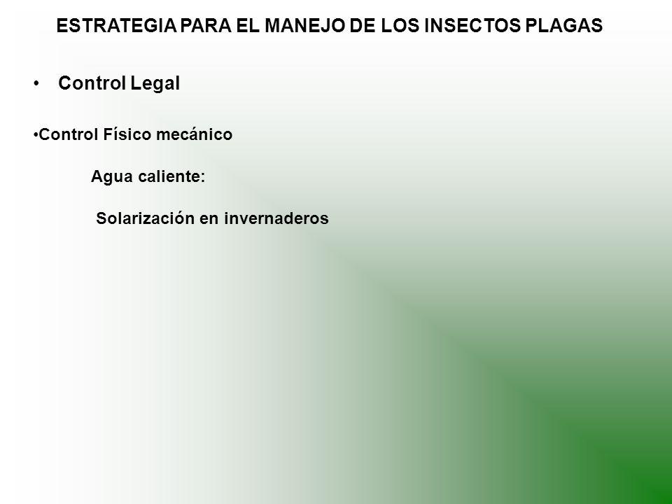 ESTRATEGIA PARA EL MANEJO DE LOS INSECTOS PLAGAS