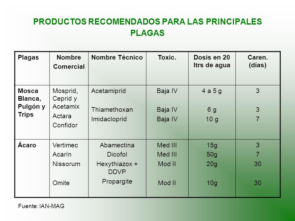 PRODUCTOS RECOMENDADOS PARA LAS PRINCIPALES PLAGAS