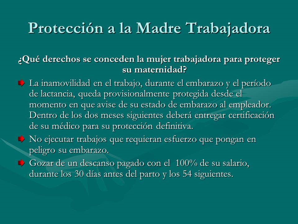 Protección a la Madre Trabajadora