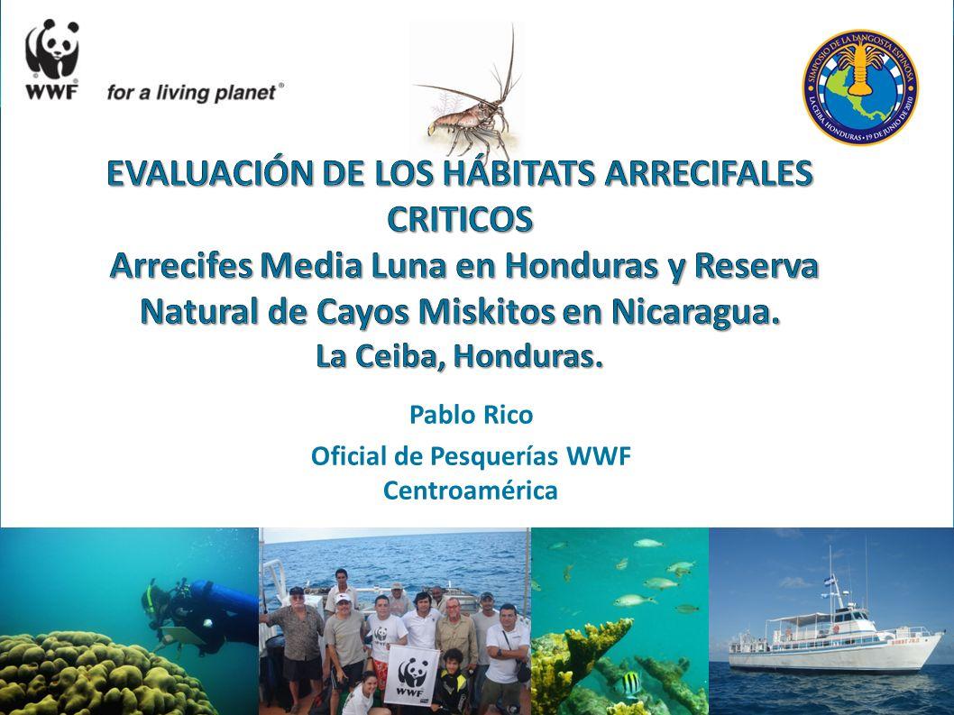Pablo Rico Oficial de Pesquerías WWF Centroamérica