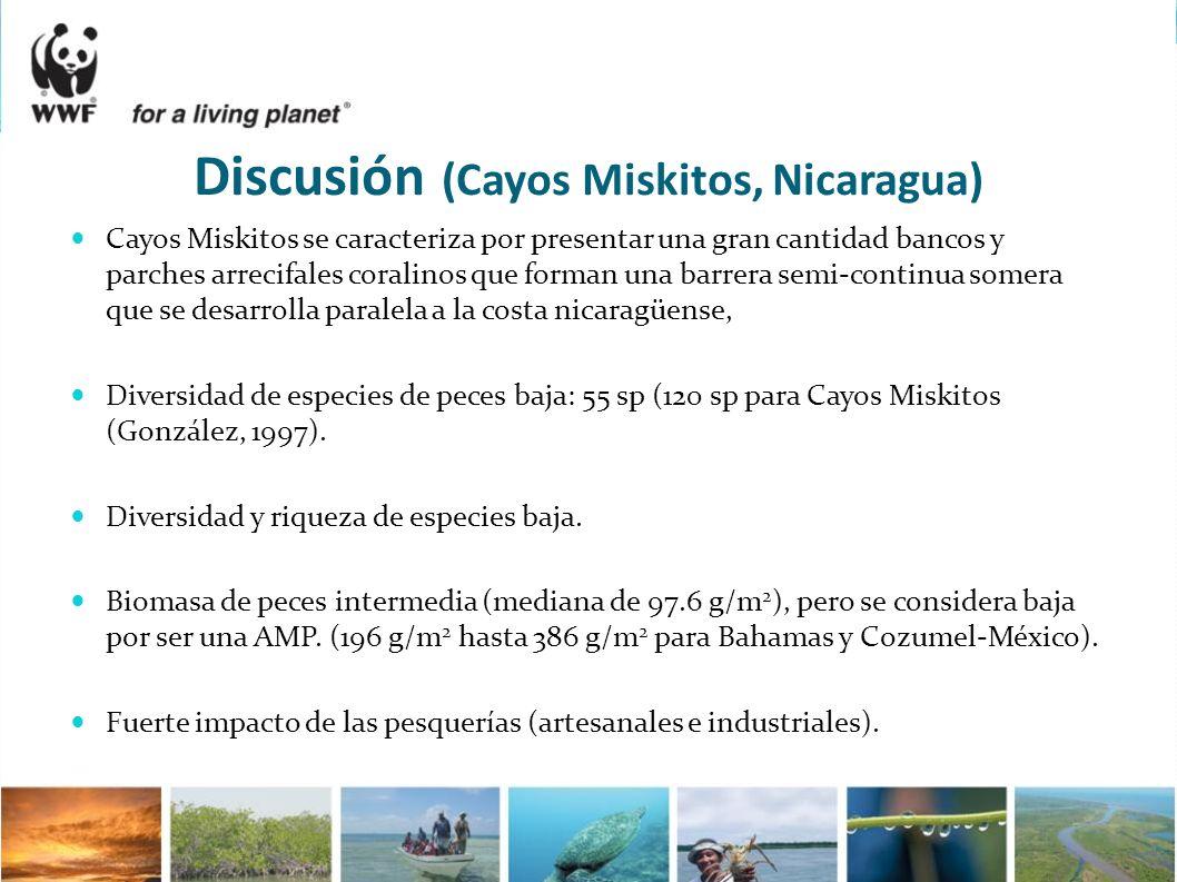 Discusión (Cayos Miskitos, Nicaragua)