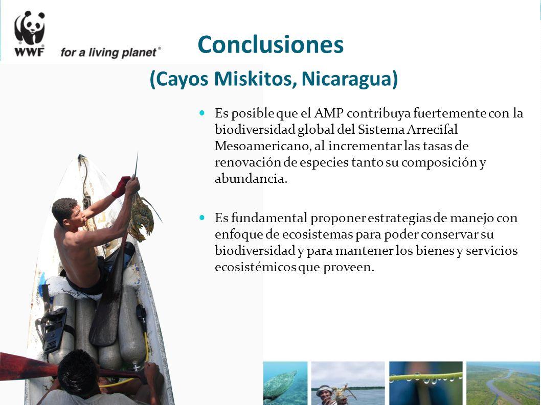 Conclusiones (Cayos Miskitos, Nicaragua)