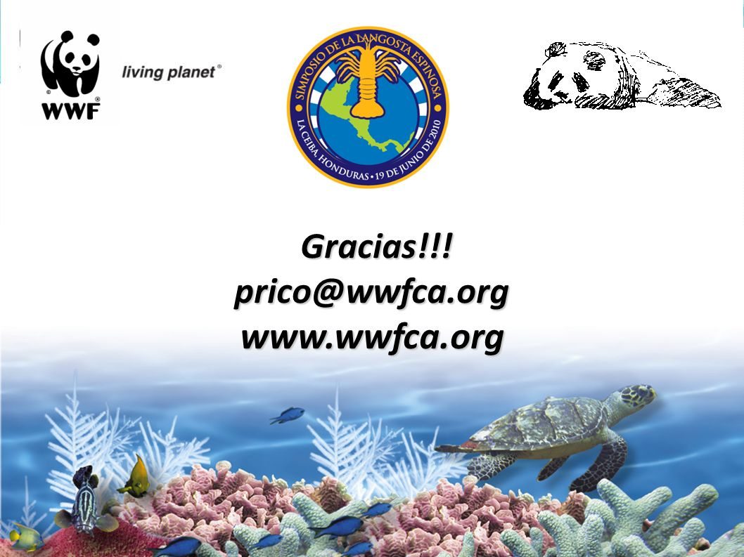 Gracias!!! prico@wwfca.org www.wwfca.org